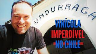 Viña Undurraga, uma vinícola imperdivel