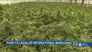 Tampa Bay lawmaker files bill to legalize recreational marijuana in Florida