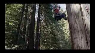 James Taylor - Wichita Lineman - Grammy Nominated