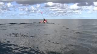 2馬力ゴムボート 走行シーン