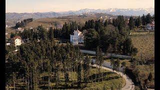 Trabzonda Hamsi Gibi Uçmak - Mavic Air 2 Şehir Üstü FPV Uçuşu