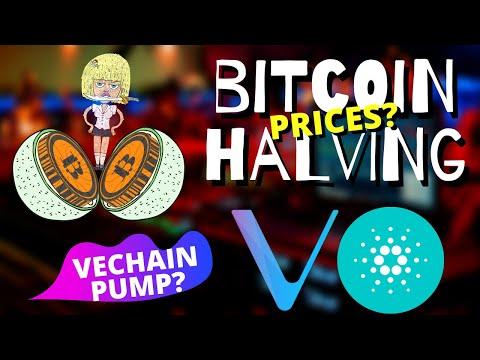 BITCOIN AND CRYPTO EVERYWHERE | BTC Halving Price | Vechain Microsoft? Cardano ADA, Enjin ENJ News