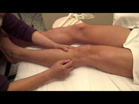 Die Orthese am Knöchel mit einem Schnürsystem und Gurtband als st