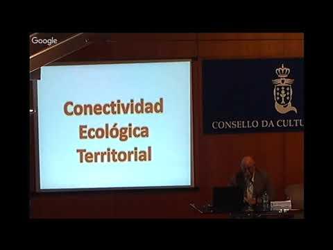 Infrestrutura, trama territorial e fluxos ecosistémicos (conexión ecolóxica-territorial)