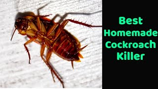 Homemade cockroach killer, Goodbye to cockroaches with this homemade trick, Get Rid Of Cockroaches