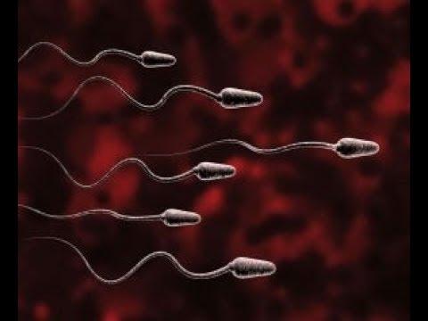 Vospolenie antybiotyki prostaty