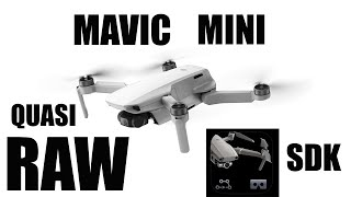 Foto e video RAW su MAVIC MINI | Con questa APP è quasi POSSIBILE!!! SDK APP
