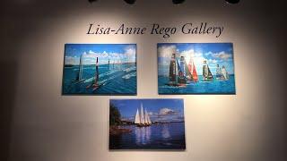 Ginger Cook: Lisa-Anne Rego Gallery Live in Bermuda