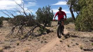 Take a look at the singletrack in Golden Open Space, NM.