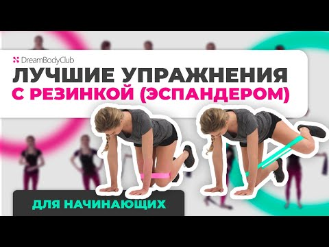 Лучшие упражнения с резинкой (эспандером). Тренировка для начинающих на всётело