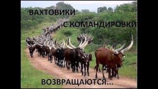 Смех для ВСЕХ )))))