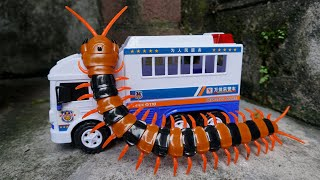 Police Car Helps Cars From Centipedes