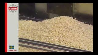 Almond: Grater/Shredder 2 mm