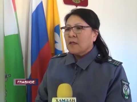О выявлении сомнительной мясной продукции без документов в Республике Калмыкия
