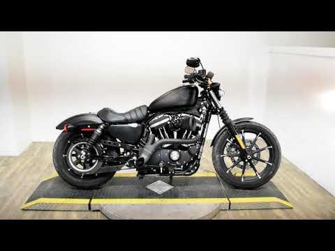 2019 Harley-Davidson Iron 883™ in Wauconda, Illinois - Video 1