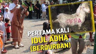 Video Merinding😭 Muslim Korea Pertama Kali Berqurban (Idul Adha 2019) MP3, 3GP, MP4, WEBM, AVI, FLV Agustus 2019