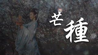 芒種 音闕詩聽、趙方婧【完整MV】/Everything is causal /Mang zhong
