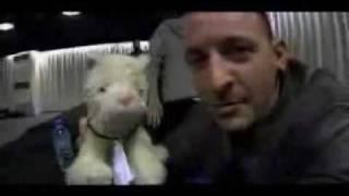 Chester Charles Bennington, Linkin Park - Chester Bennington