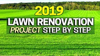 2019 Lawn Renovation Plan Step By Step 🏅Transform Your Ugly Lawn