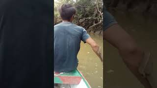 preview picture of video 'Star mancing di sungai'