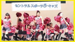 チア★セントラルスポーツ キッズチア /港まつり 20190503
