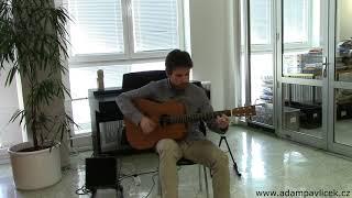 Video Adam Pavlíček - That´s the Way (Hommage to Led Zeppelin) / live