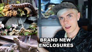 Setting Up New Reptile Enclosures! Corn Snake, Bearded Dragon, & Blue Tongue Skink Setups