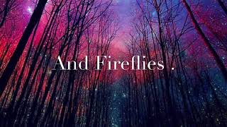Fireflies { Lyrics } by Faith Hill