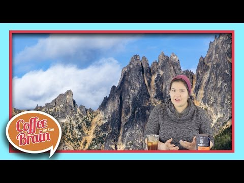 How Altitude Affects Coffee Flavor | Coffee On The Brain