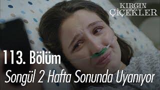 Songül 2 haftanın sonunda uyanıyor - Kırgın Çiçekler 113. Bölüm | Final
