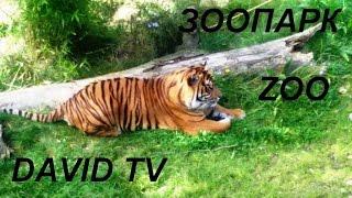 Зоопарк в Германии.Часть 1.Видео для детей.Zoo Osnabrück