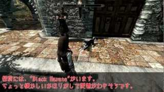 MOD in Skyrim -HS-Dog-base- [HD]
