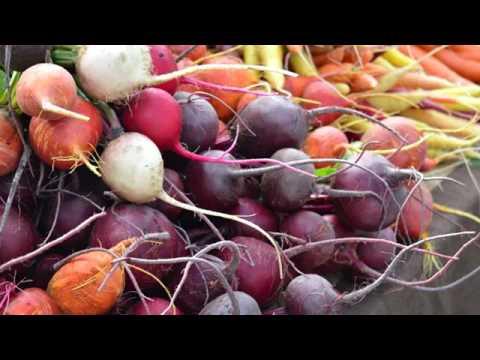 Perdere il peso su cibo vegetale