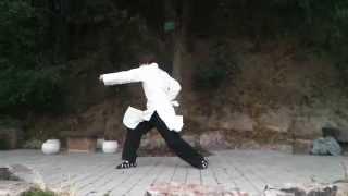 preview picture of video '武当基本拳 Wudang Ji Ben Quan'
