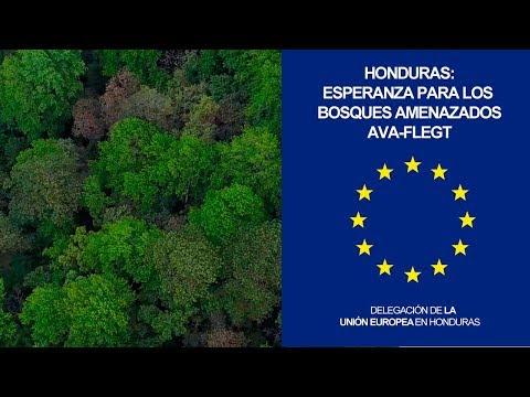 Honduras: Esperanza Bosques Amenazados