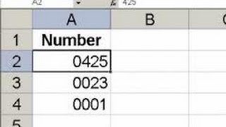 HOW TO KEEP LEADING ZEROS ON LEFT IN EXCEL 2010? VIDEO TUTORIAL