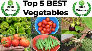 Top 5 Best Vegetables Easy To Grow In Your Vegetable Garden