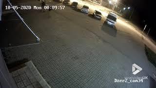 videos de risa el oso ataca en el estacionamiento