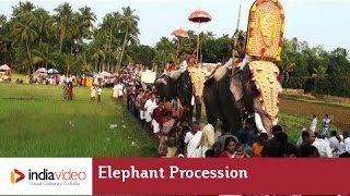 Elephant procession during Machattu Mamangam, Thrissur