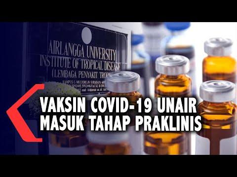 vaksin covid- buatan unair masuk tahap praklinis