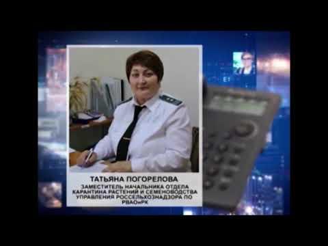 Об утилизации 10 партий крупы в районной больнице Республики Калмыкия