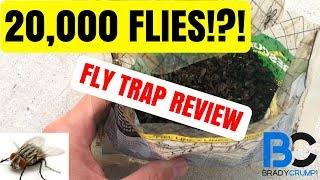 Best Fly Trap | The Rescue Fly Trap Review