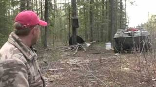 How To Field Judge a Black Bear - Hunting In Alberta Canada
