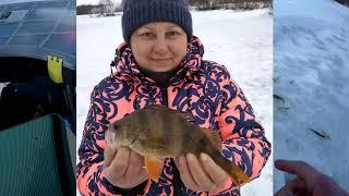 Рыбалка на реке веля в подмосковье летом