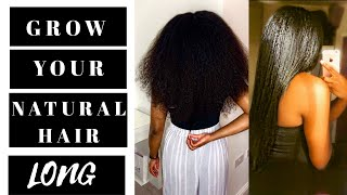 BEST TIPS To GROW LONG NATURAL HAIR  ⇒  Grow Your Type 4 Hair To Waist Length
