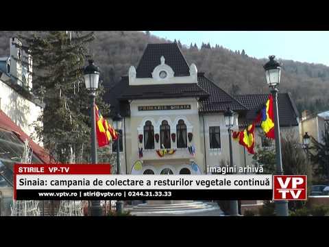 Sinaia: campania de colectare a resturilor vegetale continuă