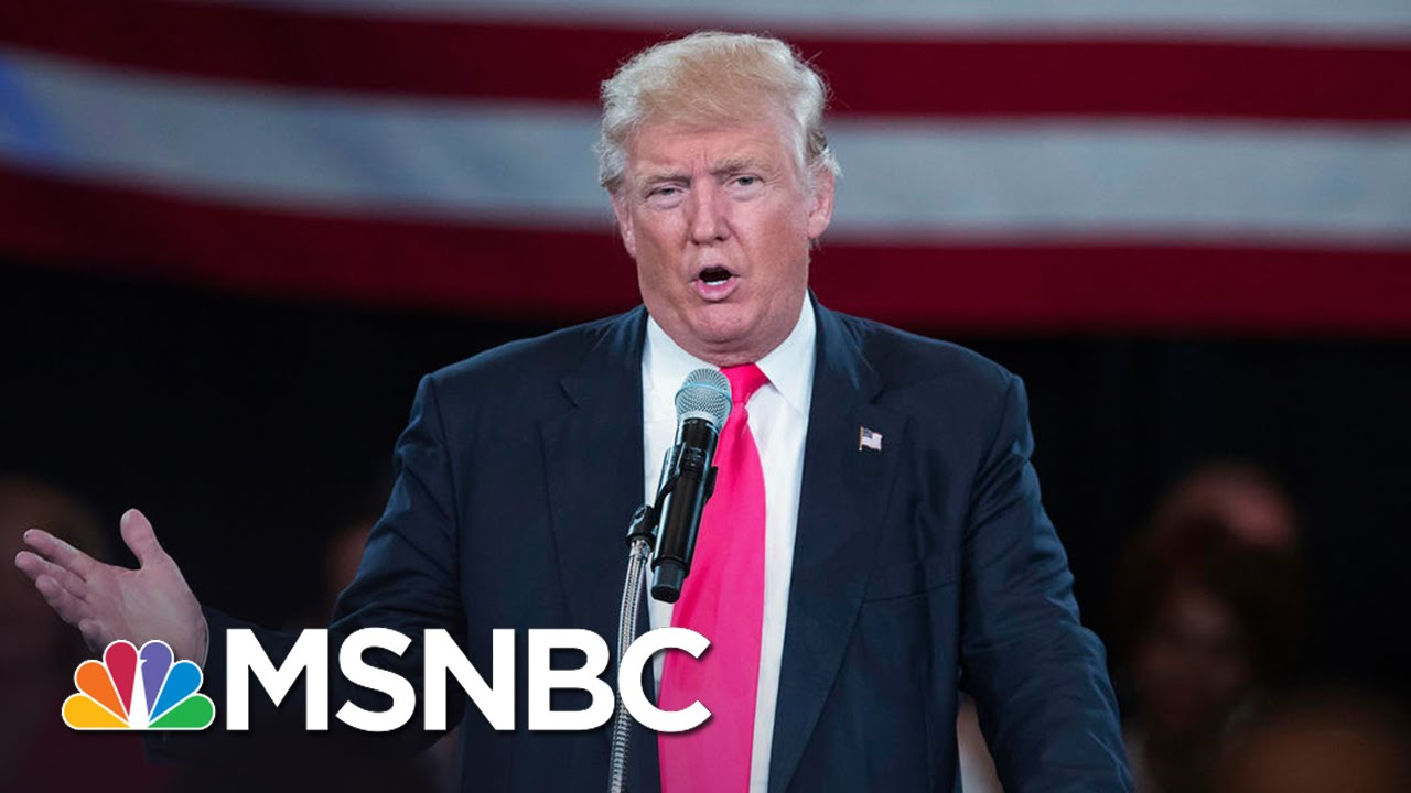 Donald Trump: Debbie Wasserman Schultz Worked 'To Rig The System' | MSNBC thumbnail