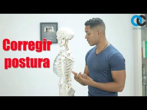 Volume della prostata sei centimetri al cubo