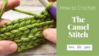 How to Crochet: Camel Stitch (Easy Tutorial)