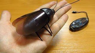 Робот жук на радио управлении из Китая!